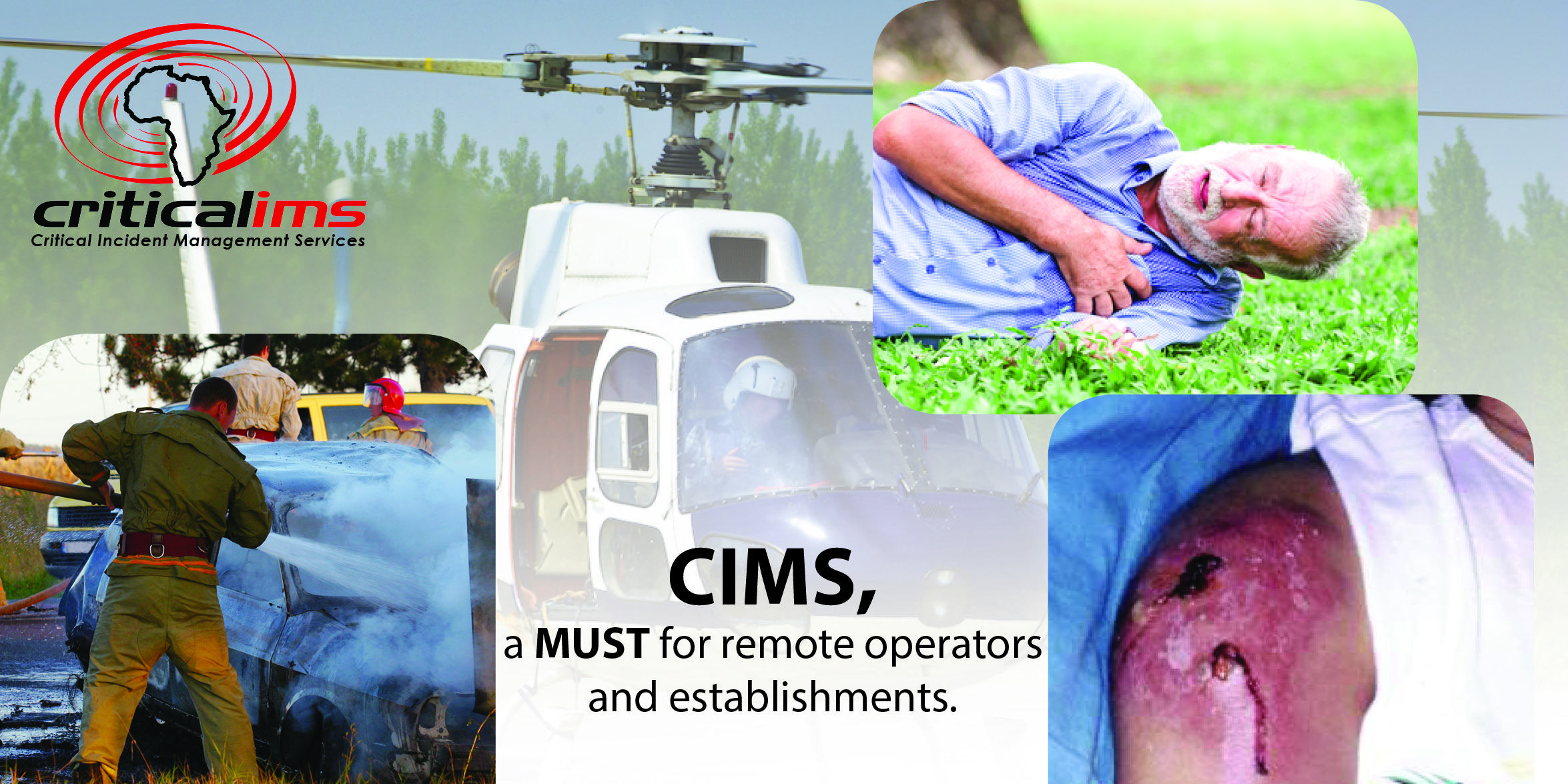 pic for CIMS article