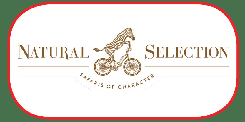design for testimonials logos3